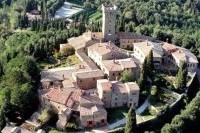 medieval castle view